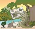 Alligator Album