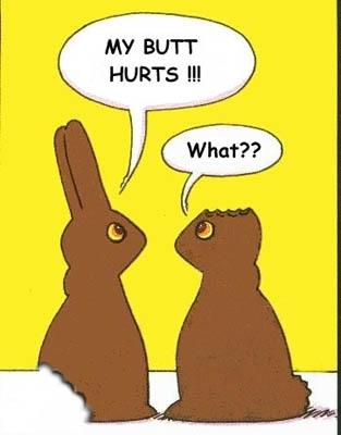 Injured Easter Bunnies