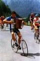 Musical Cyclist