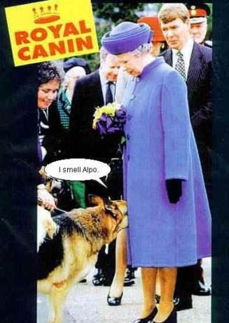 Queen's Treats