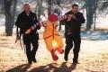 Ronald Arrest