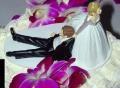 Wedding Cake Funny Bride